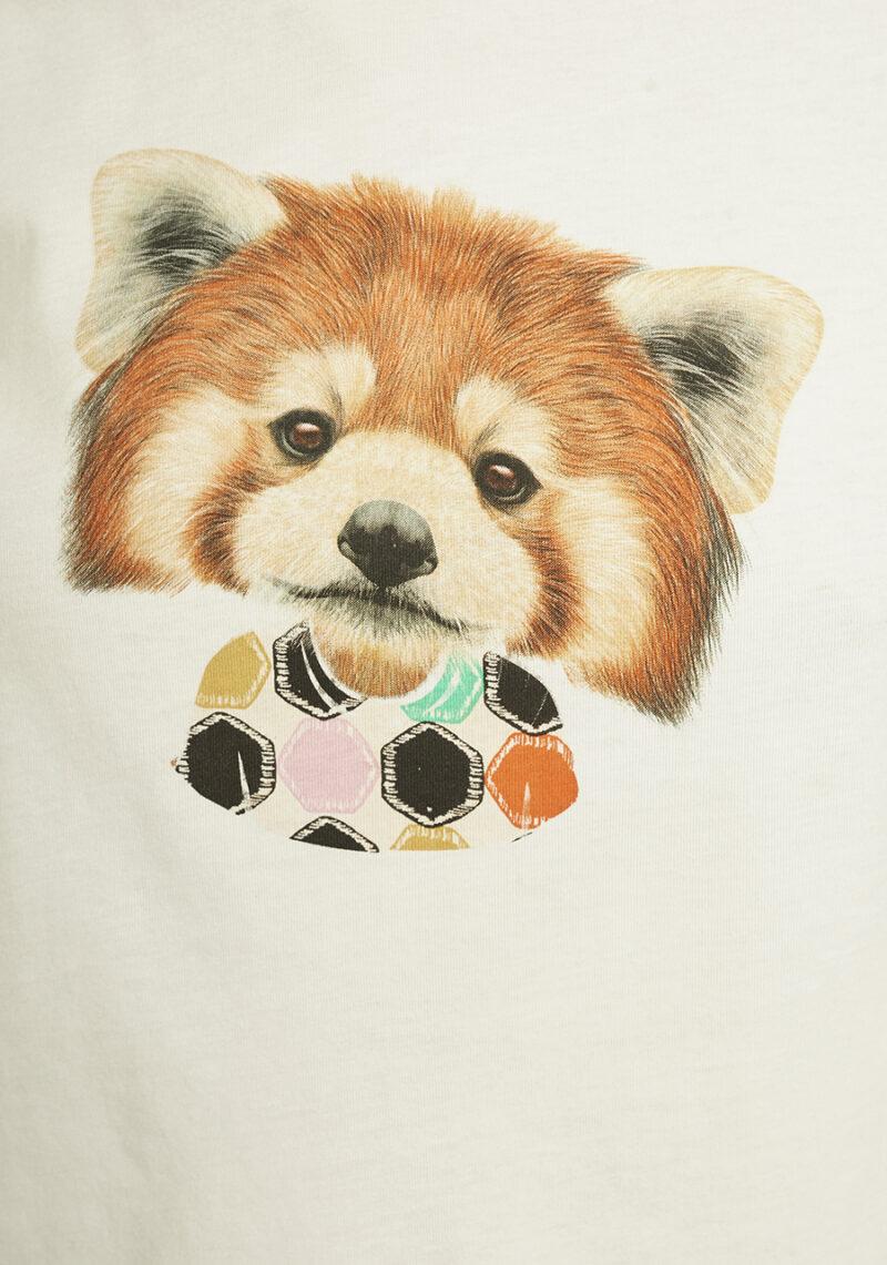 camiseta-zorro-ellesmere