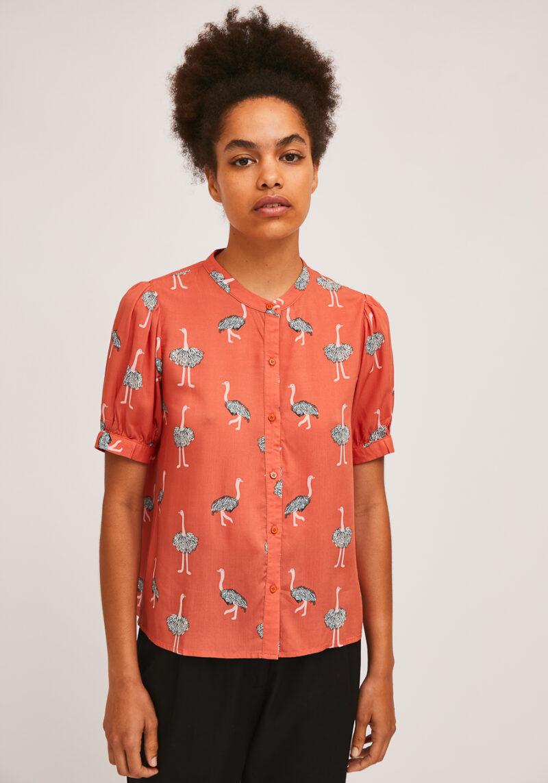 camisa-caldeta-estampado-avestruces